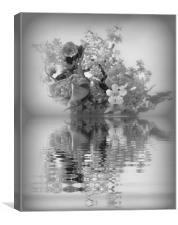 pretty reflections, Canvas Print