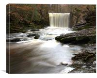 Woodland Waterfall, Canvas Print
