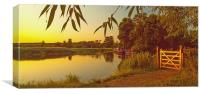 River Wey Pyrford Surrey, Canvas Print