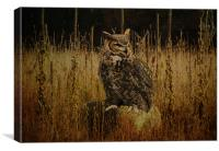 Great Horned Owl, Canvas Print
