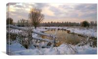 Winter on the Ivel 1, Canvas Print