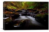 Reelig glen, Canvas Print