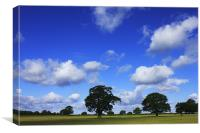 A lovely day, Canvas Print