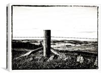 Fenced and Barbed, Canvas Print
