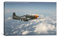 Mustang P51  - Old Crow, Canvas Print