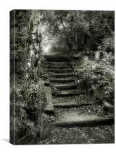 Steps, Canvas Print