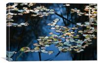 Floating Autumn Leaves, Canvas Print