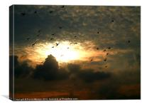 THE FLY PAST, Canvas Print