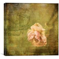 Yesterday's Rose, Canvas Print