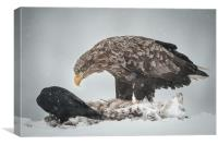 Eagle and Raven, Canvas Print