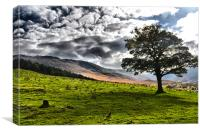 Moorland over dovestone, Canvas Print