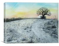 Snowy Oak, Canvas Print