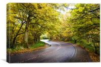 Autumn Road, Mousehold, Canvas Print
