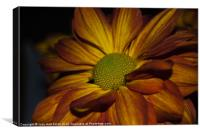 Autumn Mum, Canvas Print
