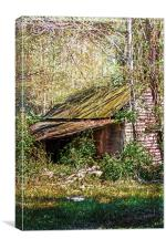 Tin Roof Rusted, Canvas Print