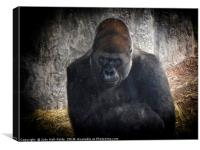 Gorilla Portrait, Canvas Print