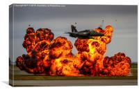 Hawk T2 Role Demo, Canvas Print