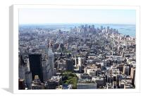 Lower Manhattan from Empire State, Canvas Print