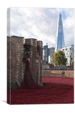 Poppies, the Tower of London and the Shard, Canvas Print