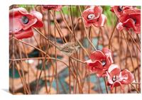 Sparrow and Red Poppies at the Tower of London, Canvas Print