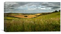 Summer Evening Near Aldworth, Canvas Print