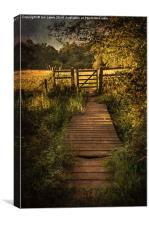 Gate into The Meadow, Canvas Print