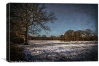 Snowy Tidmarsh Meadows, Canvas Print