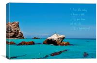 Seal Rock, Canvas Print