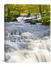 Waterfall, Garwnant Forestry Centre, Canvas Print