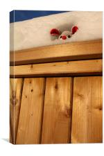 Mouse in his snow-house, Canvas Print