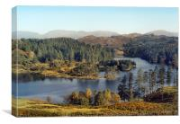 Tarn Hows The Lakes District, Canvas Print