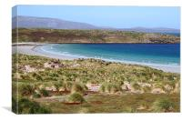 Carcass Island in The Falklands, Canvas Print