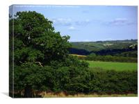 Devon Summer, Canvas Print