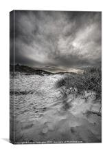 The view to the dunes, Canvas Print