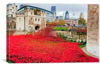 Tower of London poppies England, Canvas Print
