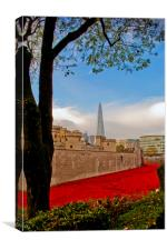 Tower of London poppies Blood Swept Lands, Canvas Print