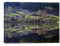 Springtime Reflections, Canvas Print