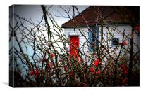 Coastguard Cottages and Rose Hips, Canvas Print