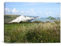 The Seven Sisters Mid Summer, Canvas Print