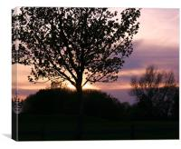 sunset behind the woodland, Canvas Print