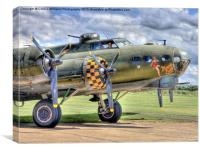 Sally B - A Flying Legend, Canvas Print