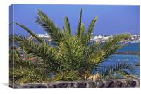 Playa Blanca , Canvas Print