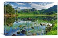 Blea Tarn,Lake District, Canvas Print