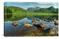 Blea Tarn In July, Canvas Print