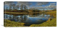 River Brathay, Canvas Print
