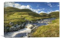 The Findhorn, Canvas Print