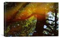 Reflections and Refractions, Canvas Print