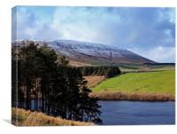 The side of Pendle Hill, Canvas Print
