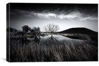 Elmley Marshes, Canvas Print