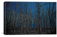 naked forest, Canvas Print
